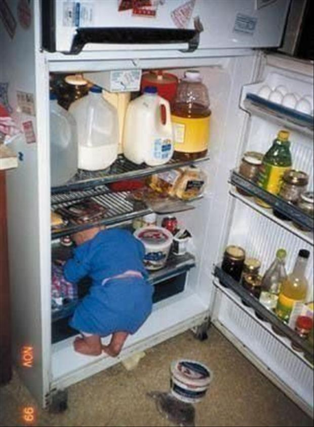boy playing in the refridgerator