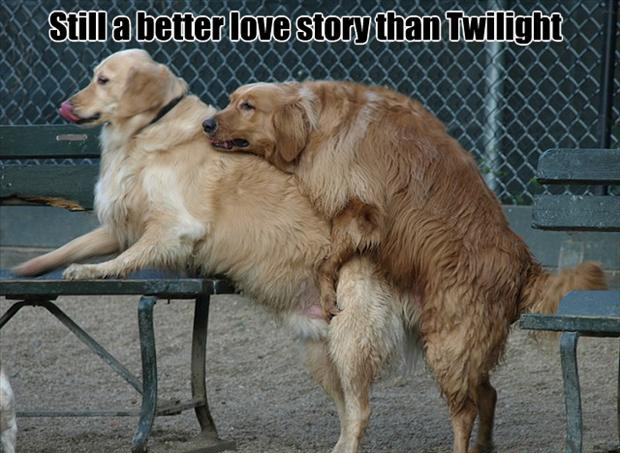 doggy style, still a better story than twilight