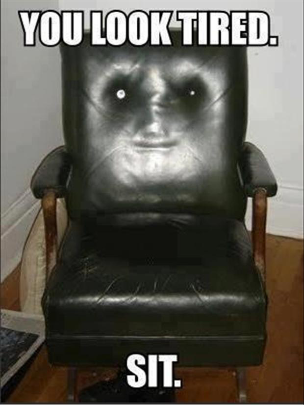 Please, take a seat. funny pics