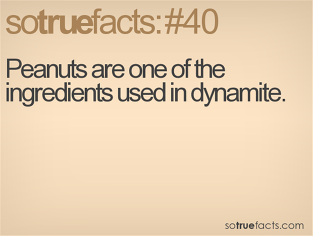 facts about explosives