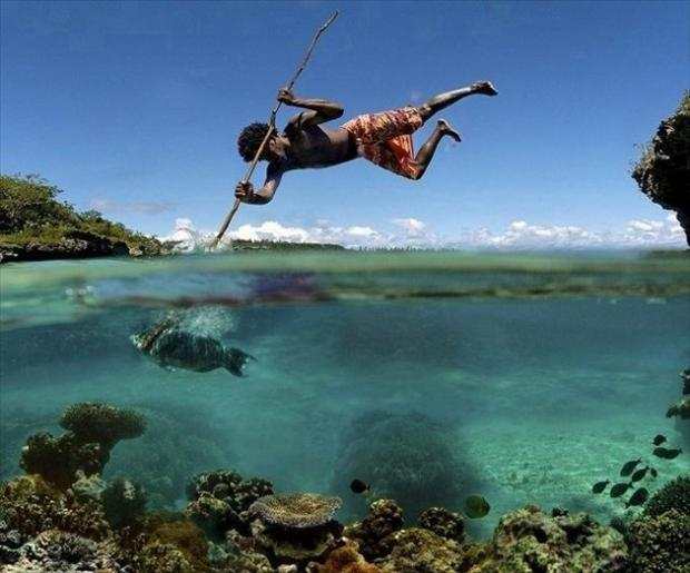 fishing, perfectly timed photos