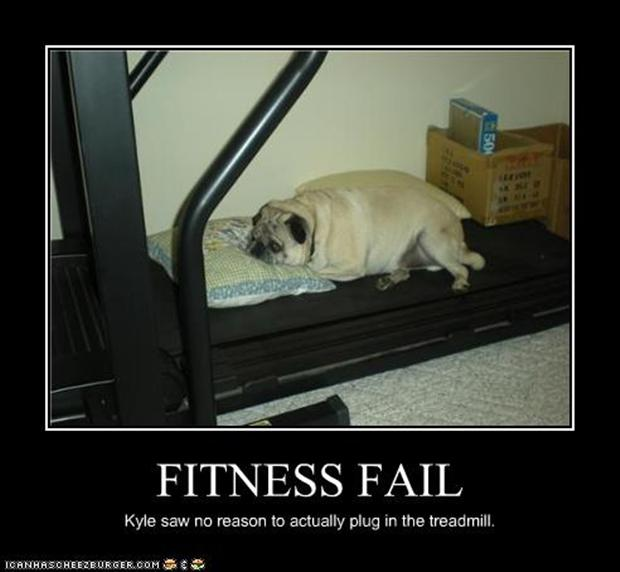 fitness fail dog