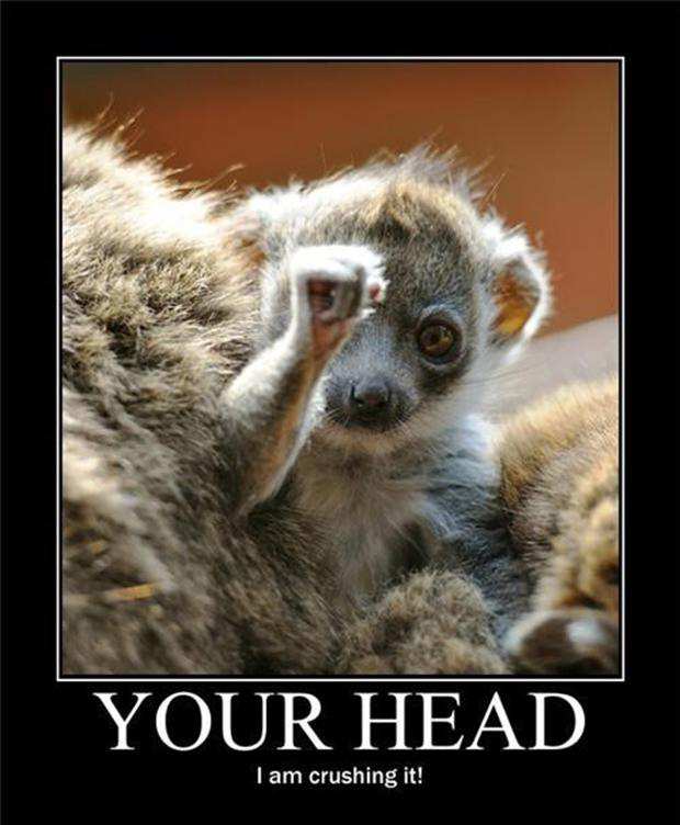 funny demotivational posters, animal is crushing your head