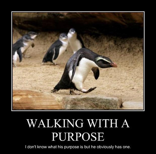funny demotivational posters, penguins