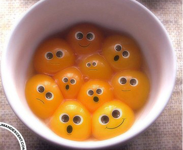 funny egg pictures thumb