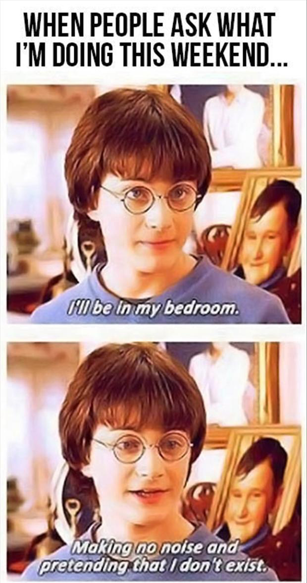 funny harry potter, what are you doing this weekend, quotes