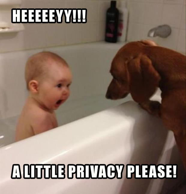 funny kids taking a bath with dog