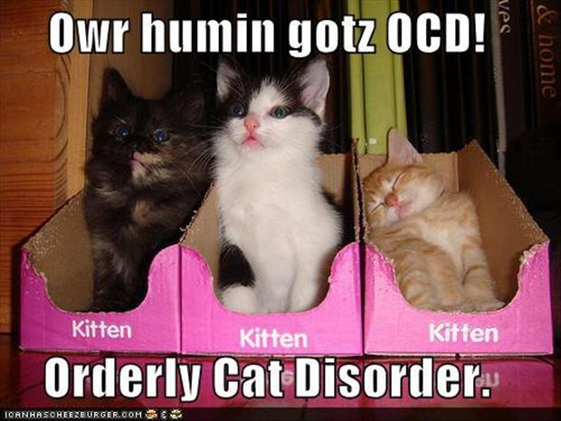 ocd dating video Video games can both offer relief from and aggravate obsessive-compulsive disorder psychology today find a therapist.