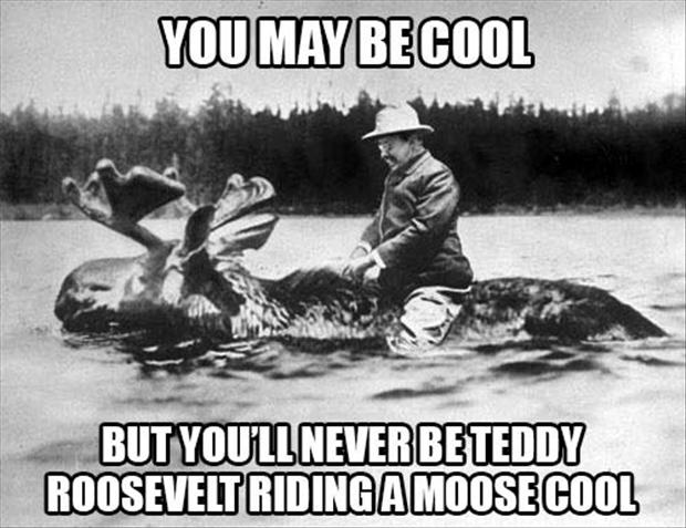 funny pictures, teddy roosevelt riding a moose
