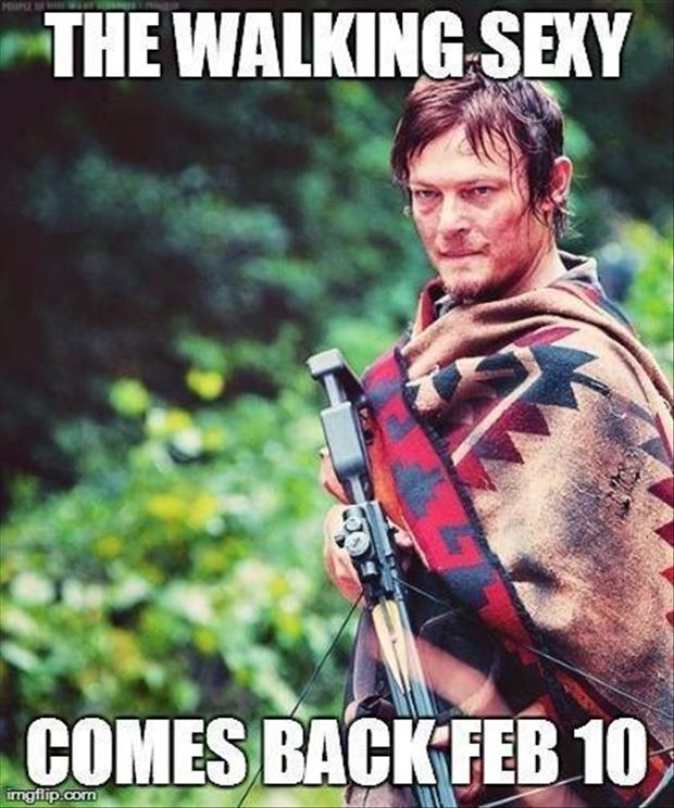 funny pictures, the walking dead