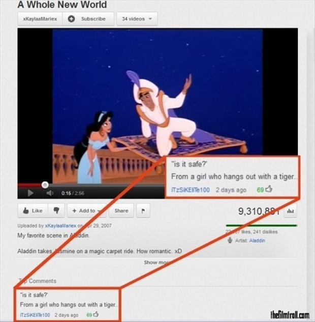 funny pictures, youtube comments