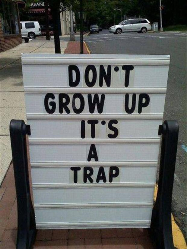 funny street signs, do not grow up