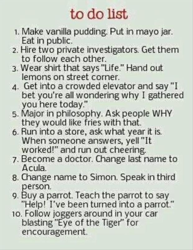 funny to do list