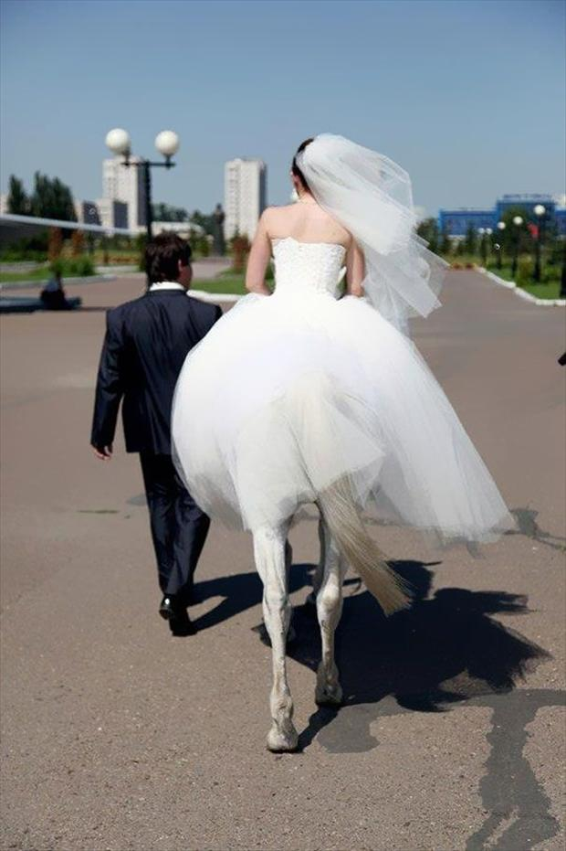 funny wedding pictures, optical illusions