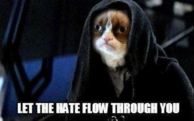 grumpy cat, funny star wars pictures