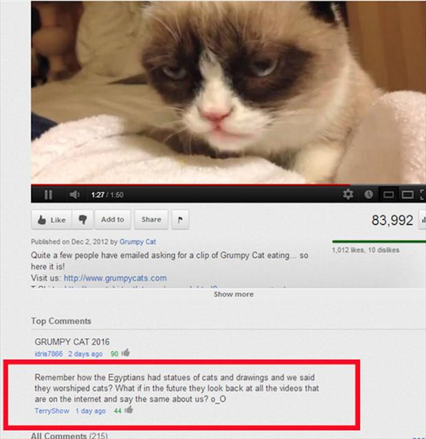 grumpy cat, funny youtube comments