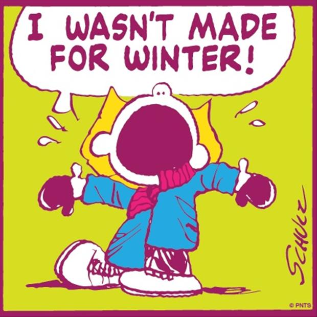 i wasn't made for winter, funny quotes