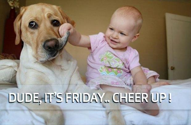 its friday dog, look happy
