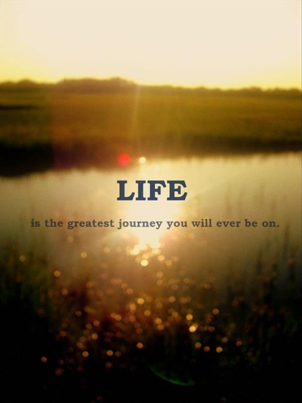 Beautiful Quotes With Pictures On Life : life quotes - Dump A Day
