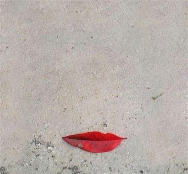 lips, optical illusions