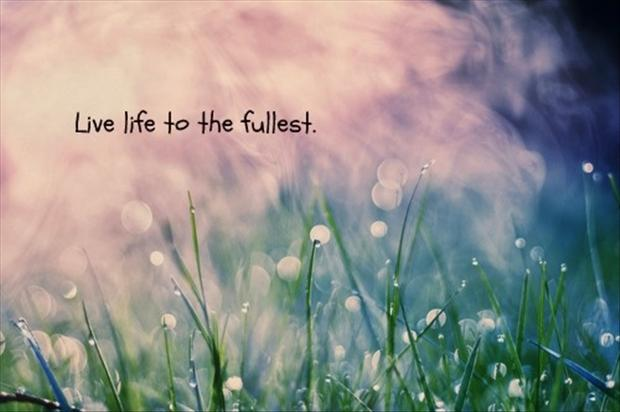 The Fullest Life Quotes To Live By. QuotesGram