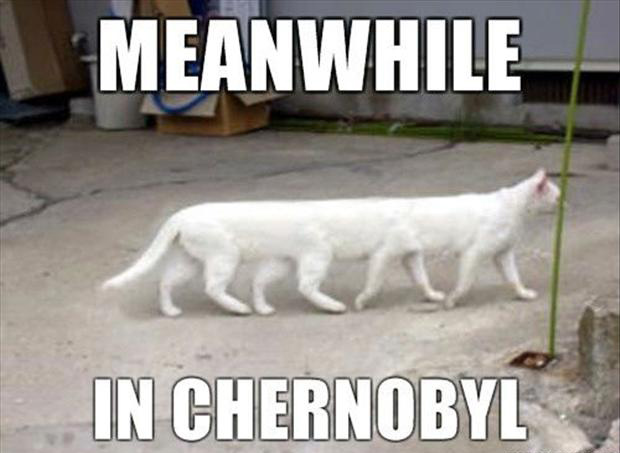 meanwhile in chernobyl