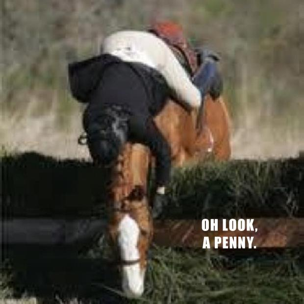 oh look a penny, horse jumping