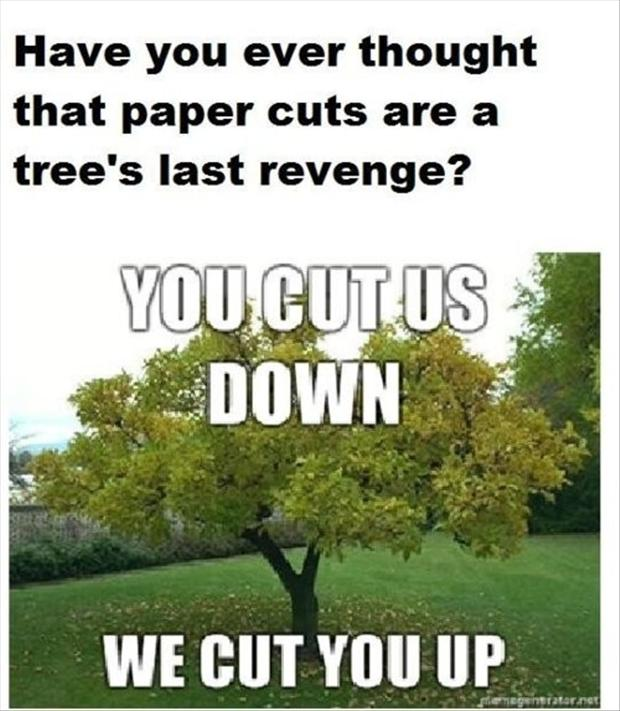 paper cuts, funny pictures