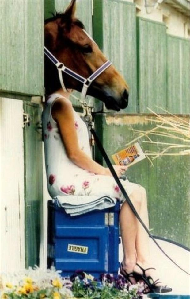 perfectly timed pictures, sara jessica parker