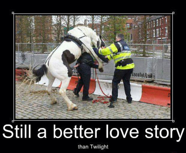 police on horse, still a better lovestory than twilight