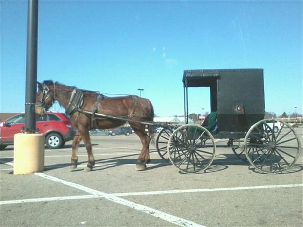 r people of wal mart, amish people