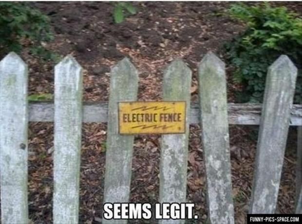 seems legit, electric fence