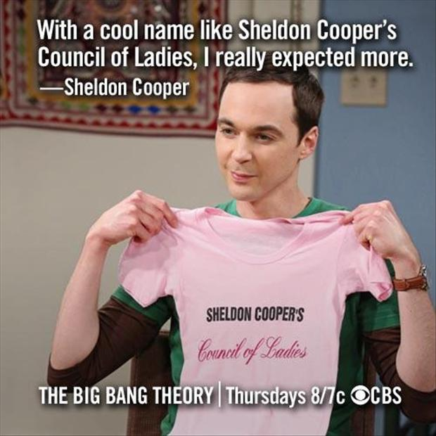 sheldon coopers counsil of ladies, funny tshirts