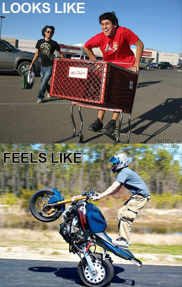 shopping cart, what it looks like, what it feels like,