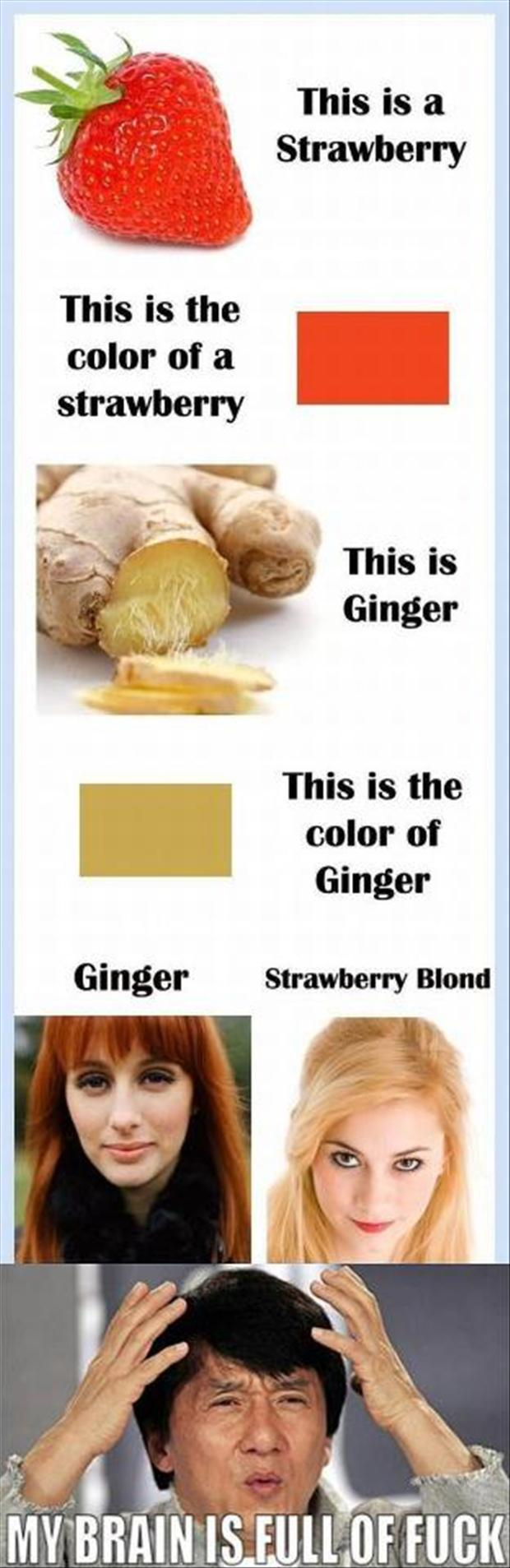 strawberry vs ginger, funny hair color