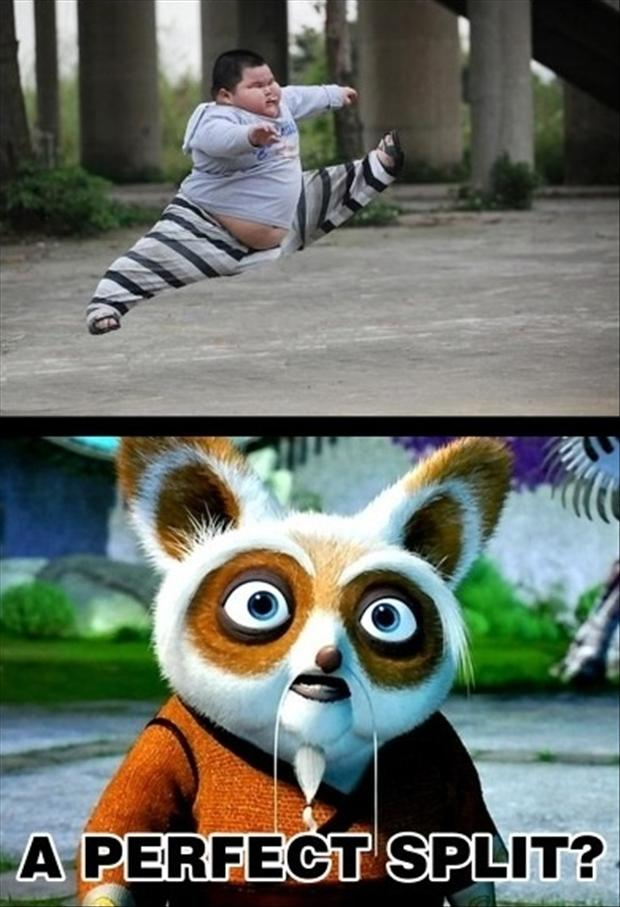 the dragon warrior, funny panda
