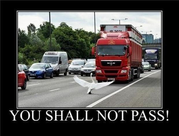 truck, you shall not pass