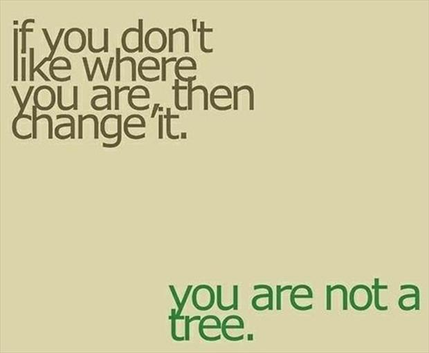 true quotes, you are not a tree