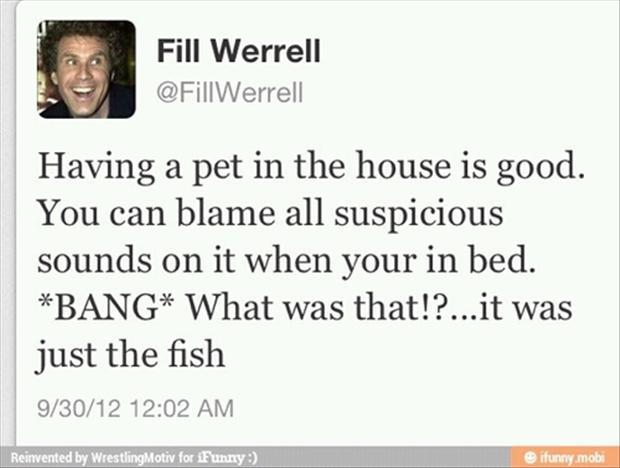 twitter quotes from will ferrel