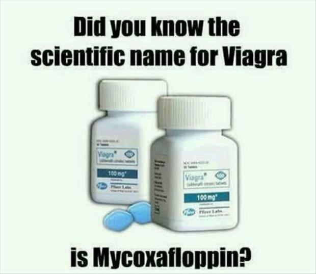 viagra, funny name for pills