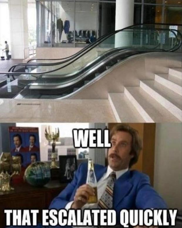 Well This Escalated Quickly Meme funny memes (Jan 06 20...