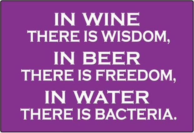 wine, beer, water, funny quotes