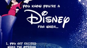 Top 30 Reasons You Know You're A Disney Fan