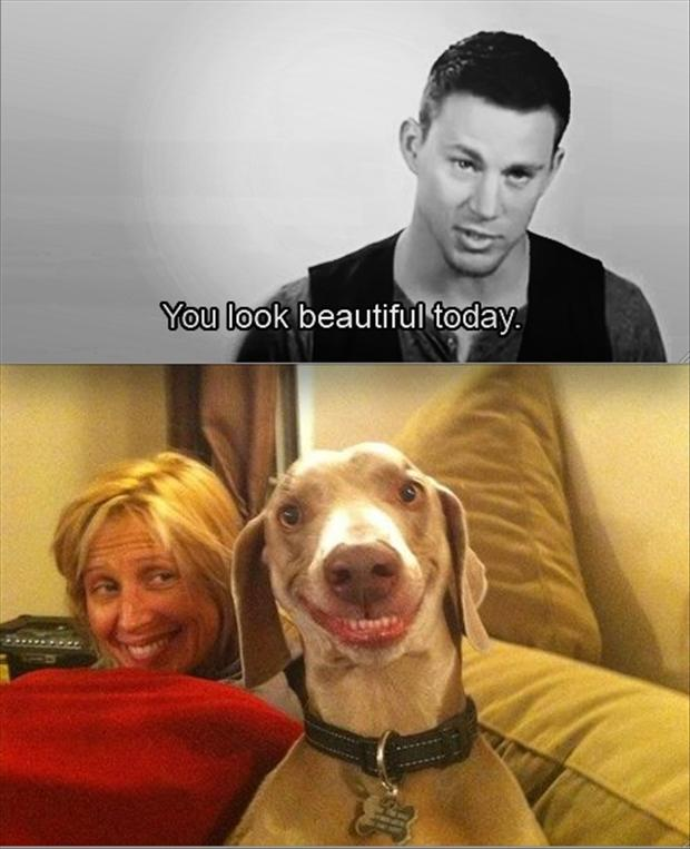 you look beautiful today, funny pictures