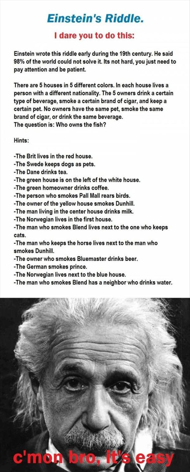 z Einsteins riddle