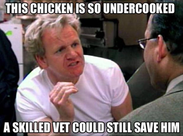 a funny pictures, Gordon Ramsey