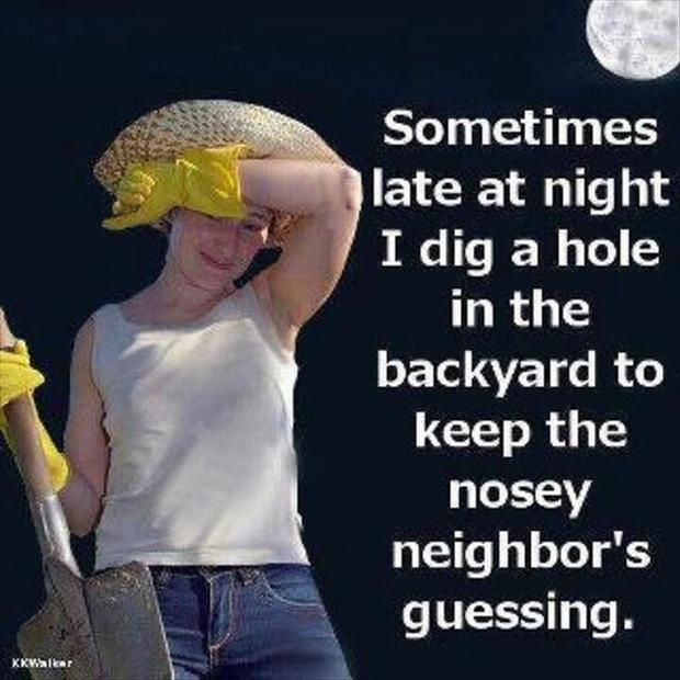 a funny pictures, neighbors