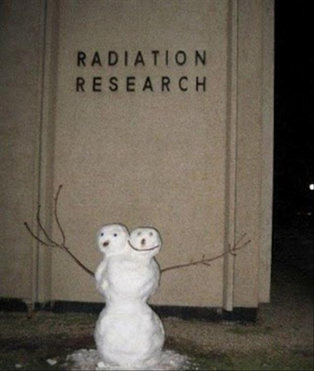 a funny snowman pictures