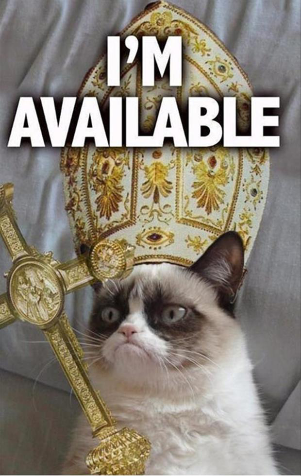 http://www.dumpaday.com/wp-content/uploads/2013/02/a-grumpy-cat-as-pope.jpg