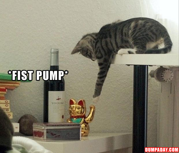 Funny fist pump pictures
